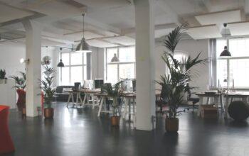 Grünes Büro