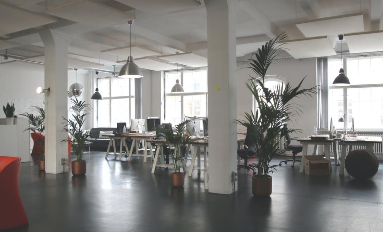 Ein entspanntes und gesundes Arbeitsklima durch begrünten Sichtschutz